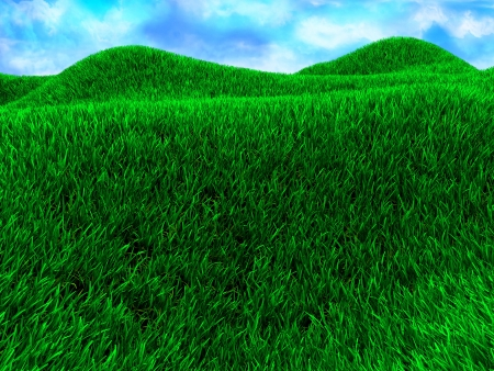 3d illustration of green meadow with blue sky illustration