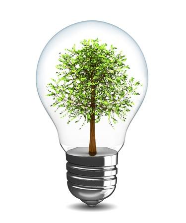 lighting equipment: 3d illustration of light bulb with tree inside Stock Photo