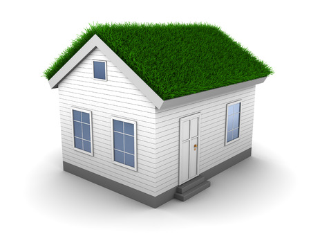 artificial: 3d illustration of house with grass on roof