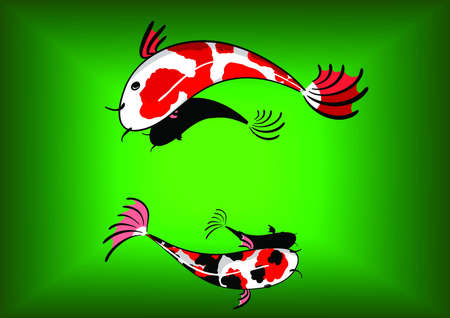 koi fancy carp Vector