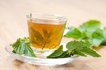 herbal tea with nettle blossoms inside teacup, stinging nettle around, on wooden floor, tilted,  photo