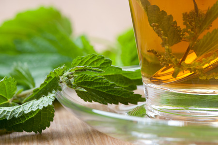 nettle tea, nettle blossoms and silver spoon inside teacup, stinging nettle leaves around, closeup, on wooden floor,