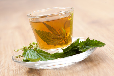 nettle tea with fresh herbs around and stinging nettle blossom inside teacup, on wooden floor, tilted,  photo