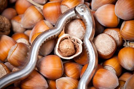 nutshell: cracked hazelnut inside nutshell, with silver retro nutcracker Stock Photo