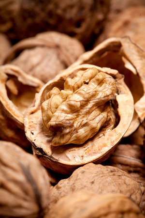 nutshell: dried walnut fruit inside cracked nutshell