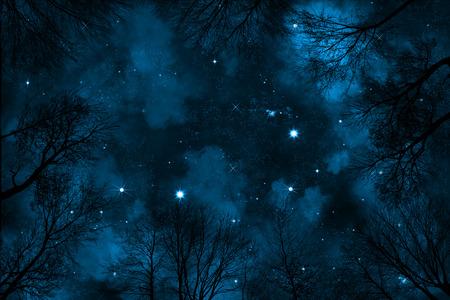 spooky lage hoek bekeken door de bomen tot sterrenhemel nachtelijke hemel met blauwe nevel,