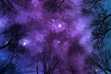 low angle view of colorful nebula on starry night sky in forest, view through trees, background