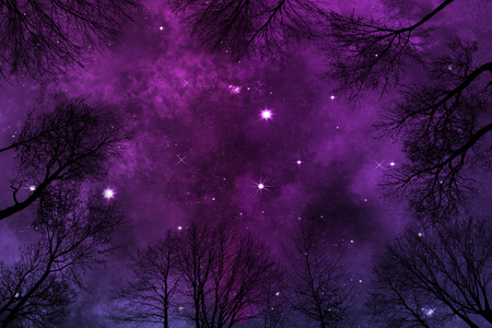 purple night sky background with bright stars and heavy nebula, low angle view through trees
