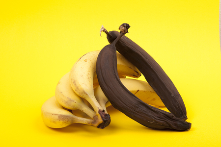 putrefied: ripe and rotten bananas on yellow background