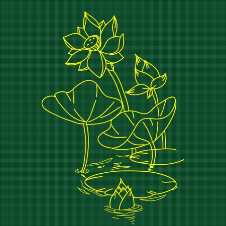 lotus flower on green background Stock Vector - 19533307