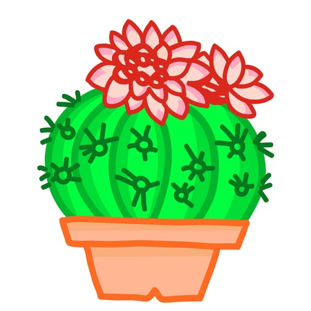potting soil: Flowering cactus on white background
