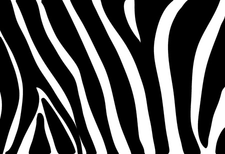 zebra texture seamless background black and white colors Stock Vector - 20450802