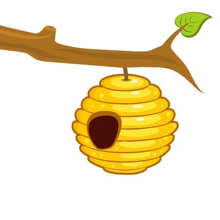abejas panal: colmena que cuelga de una rama aislada en el fondo blanco