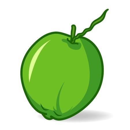 cocotier: coco clip-art sur fond blanc