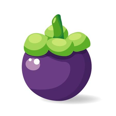 mangostano: mangostano frutta illustrazione vettoriale isolato