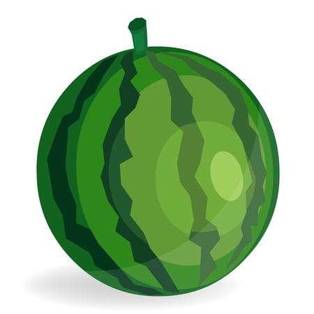 Watermelon Fruit Vector