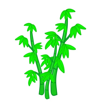 Bamboo isolated illustration on white background