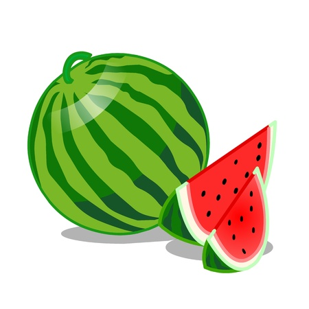 흰색 배경에 수박 과일 격리 된 그림