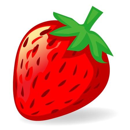 strawberry isolated illustration on white background