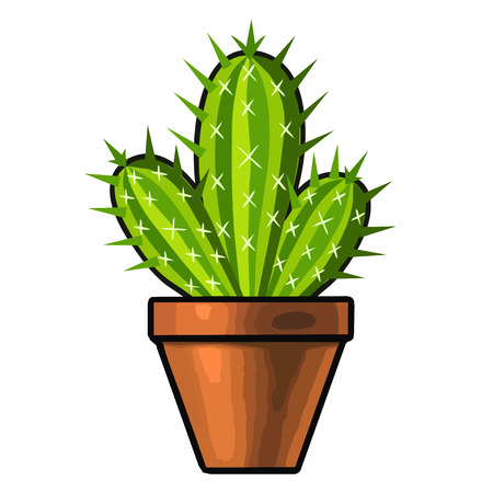 succulent: cactus isolated illustration on white background Illustration