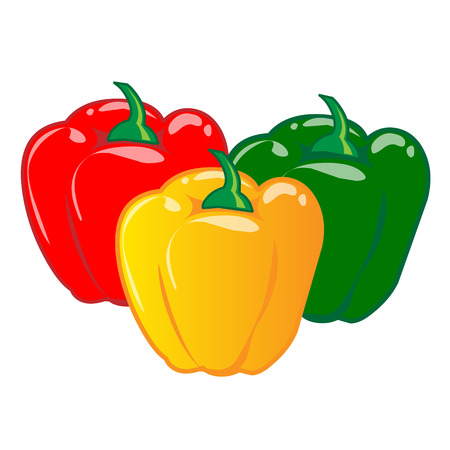 bell pepper isolated illustration on white  向量圖像