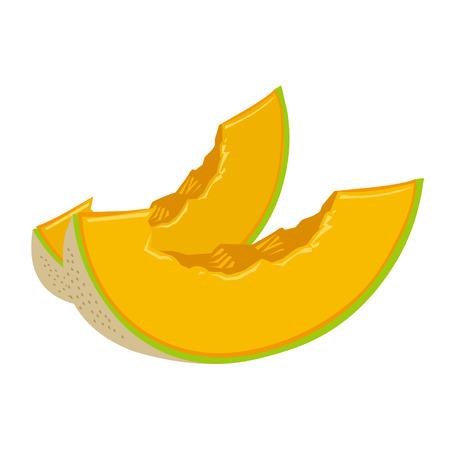 cantaloupe melon slice isolated illustration on white