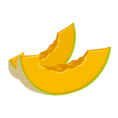 melon: cantaloupe melon slice isolated illustration on white