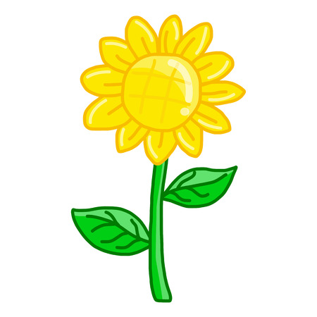 sunflower isolated: Aislado Ilustraci�n de girasol en el fondo blanco