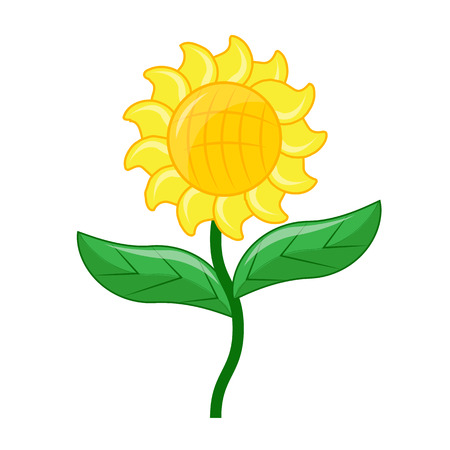 sunflower isolated: Sunflower isolated illustration on white background Illustration