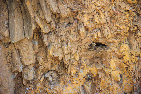 hardwearing: Soil structure