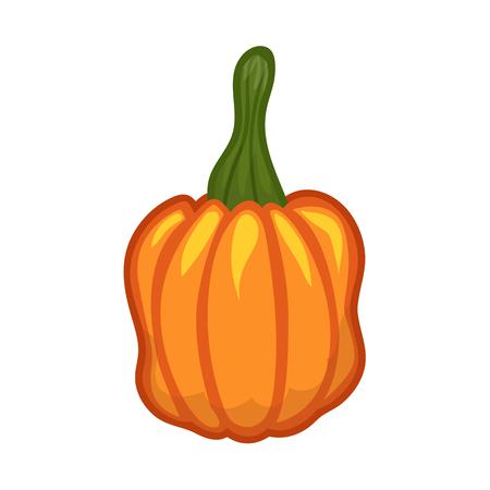 fruit stalk: Pumpkin isolated on white background Illustration
