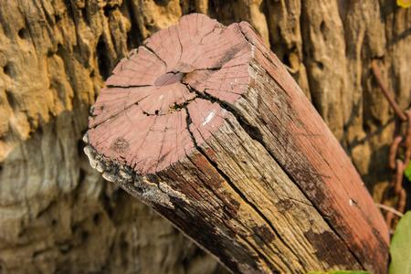 logs: wood logs