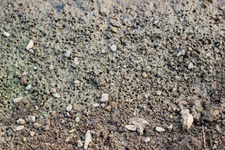 muddy: Close up of muddy