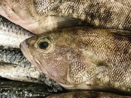 Fresh fish on ice at the market