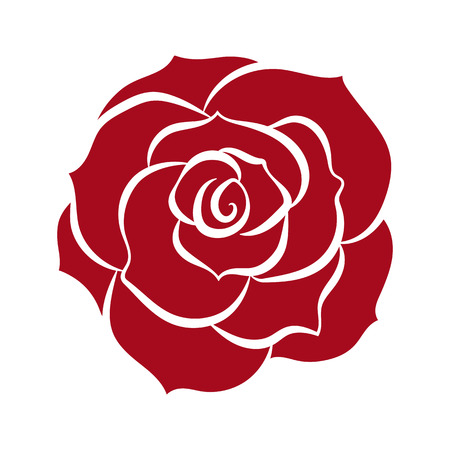 red rose isolated illustration on white background