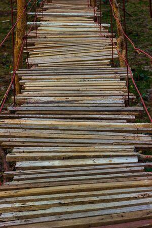 Old wooden bridge across swamp