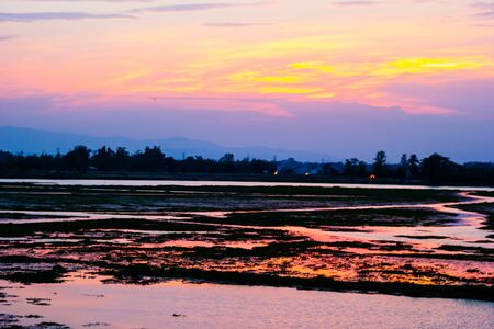 Colorful sunset on the rice field Stok Fotoğraf