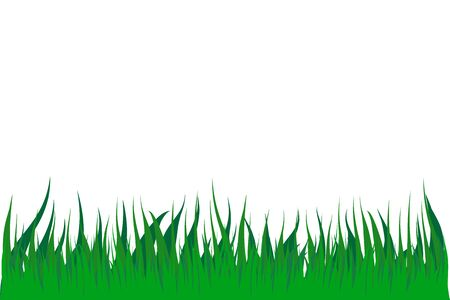 Green Meadow Grass isolated illustration on white background 向量圖像