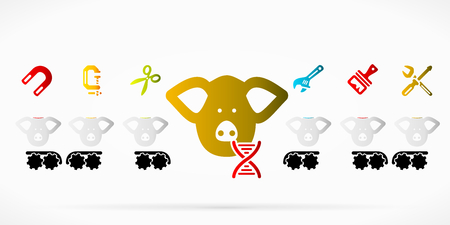 swine: Genetically engineered pork meat abstract vector illustration