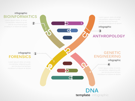 DNA concept infographic template with genetic chain made out of puzzle pieces
