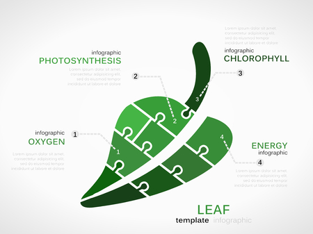 photosynthesis: Nature concept infographic template with leaf made out of puzzle pieces Illustration
