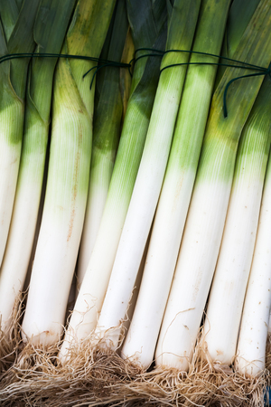 bunches: leek bunches Stock Photo