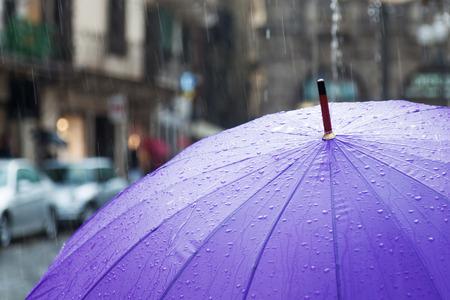 雨の傘 写真素材