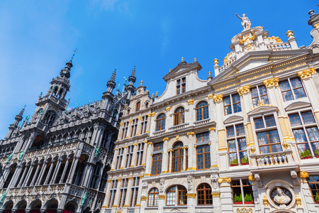 guild hall: old buildings and city hall in Brussels, Belgium
