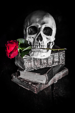 color silence: dark style picture still life with a skull, red rose and antique books, altered with selective colors