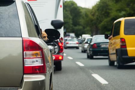 traffic jam: cars in a tourist traffic jam