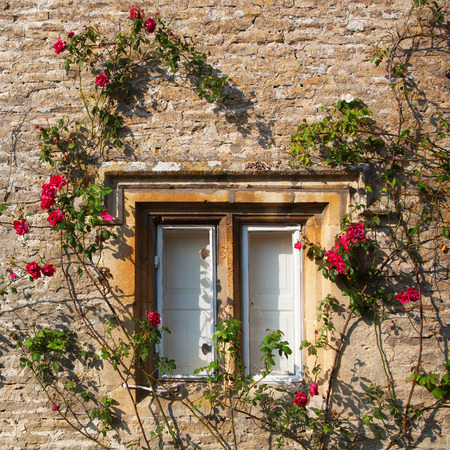 window: rose-clad stone cottage window