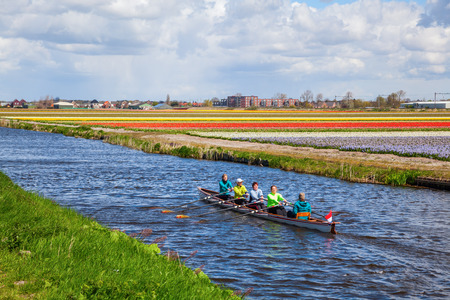 renown: Lisse, Netherlands - April 23, 2016: canoe with unidentified paddlers between tulip fields near Lisse. Lisse is world renown for the Keukenhof and the large tulip fields in the region. Editorial