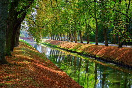 avenue: Avenue with canal in at autumnal park Stock Photo
