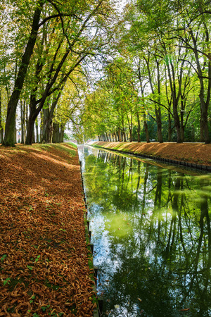 Avenue with a canal in on autumnal park